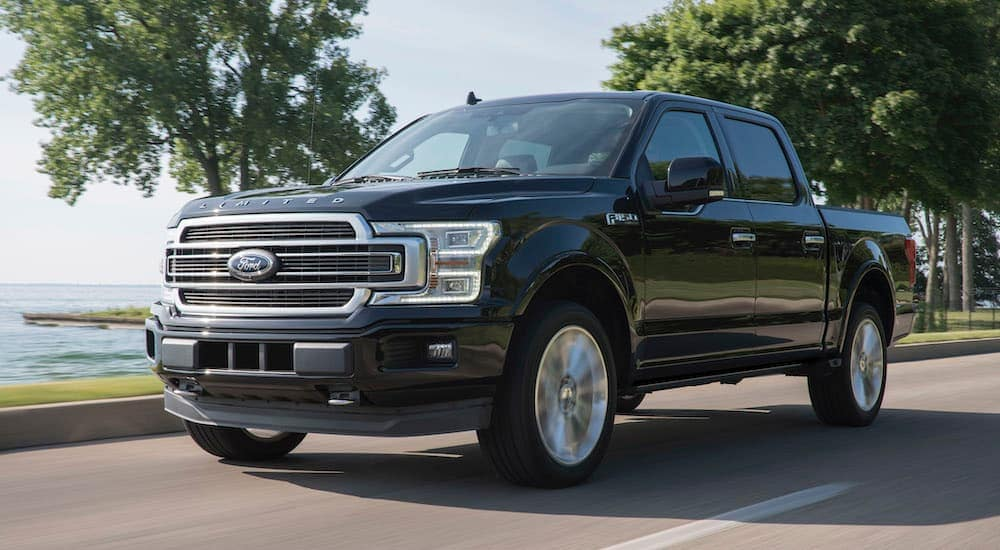A black 2019 Ford F-150 is driving past a bay.