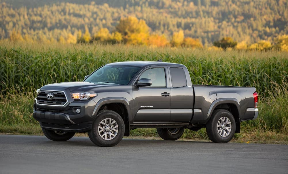 A grey 2017 Toyota Tacoma, which is popular among used cars for sale, is parked in front of a corn field.