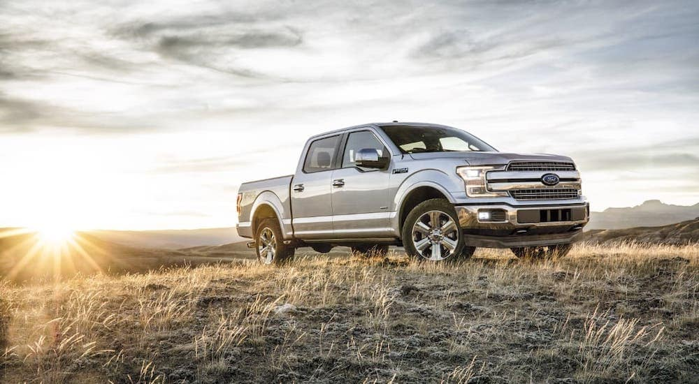 A silver 2018 Ford F-150 from a used car dealership near you is parked in a field against a cloudy sky.