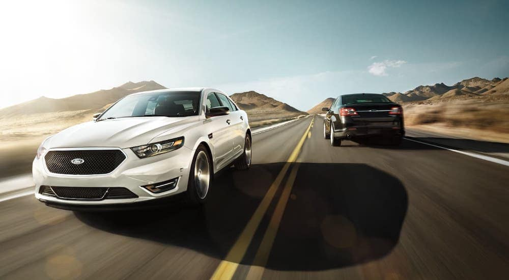 A white 2019 Ford Taurus is passing a black Taurus on a desert highway.