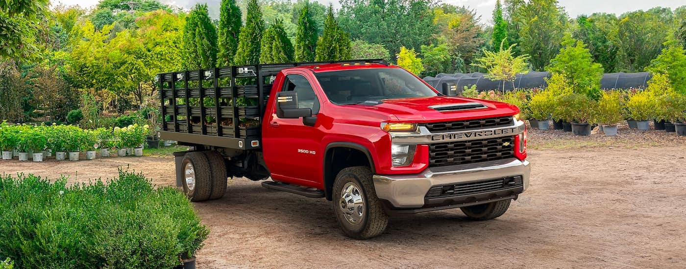 A red 2020 Chevy Silverado 3500 HD Chassis Cab is shown parked in a plant nursery.