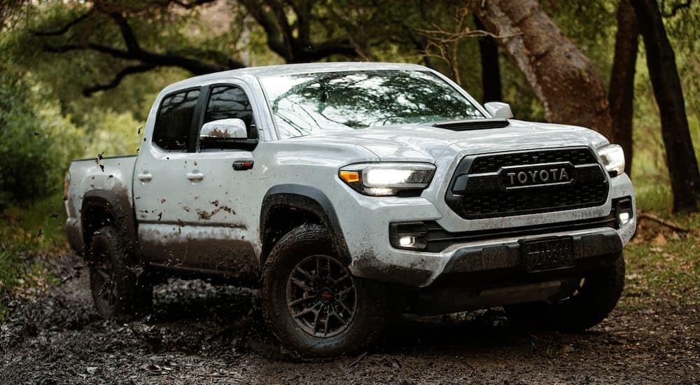 A white 2020 Toyota Tacoma TRD is shown in the woods driving through the mud.