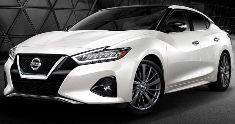 A white 2019 Nissan Maxima is shown parked in a modern gallery.