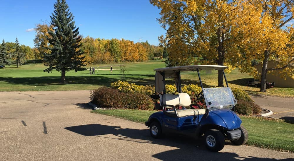 A blue golf cart is parked next to a colorful tree at a country club.