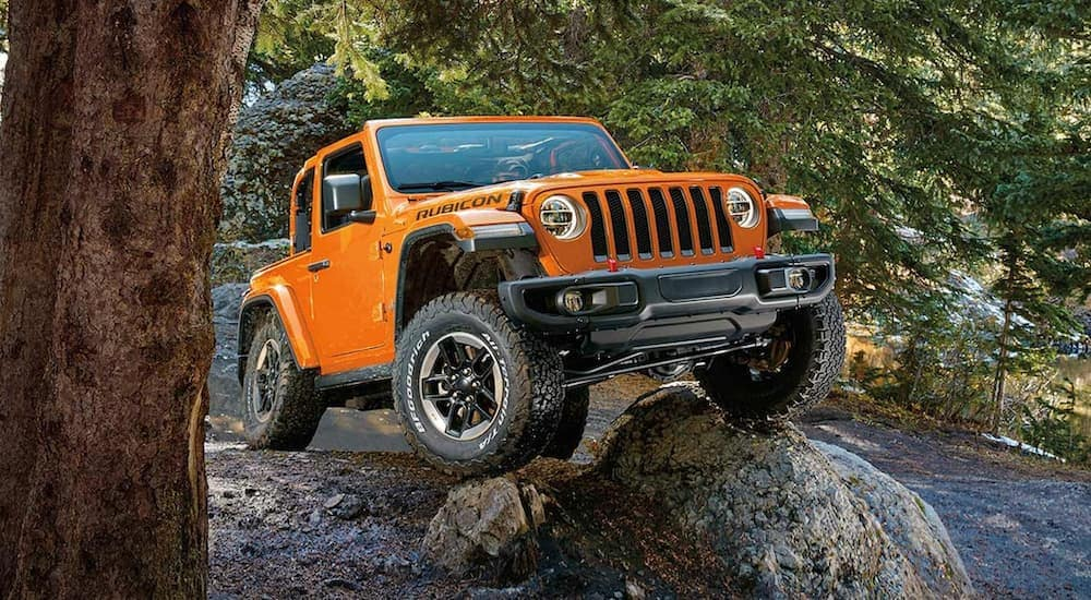 An orange 2019 Jeep Wrangler is flexing on a rock while off-roading in the woods.