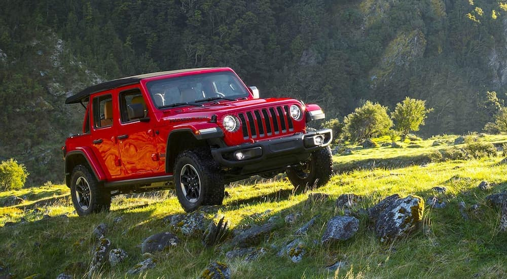 A red 2019 Jeep Wrangler is parked off-road on a grassy mountainside.