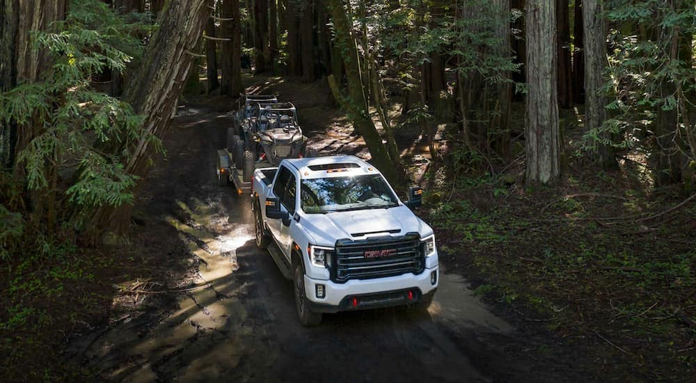 A white 2020 GMC Sierra 2500 is towing a trailer with side-by-sides on a trail in the woods after leaving a GMC dealer near me Indiana, PA.