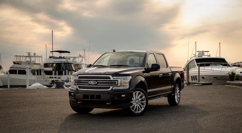 A black 2019 used Ford F-150 Limited is parked at a marina, angled left.