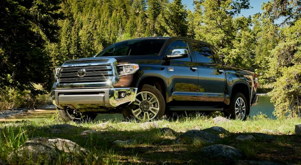 A dark brown 2021 Toyota Tundra is parked in grass in front of trees.