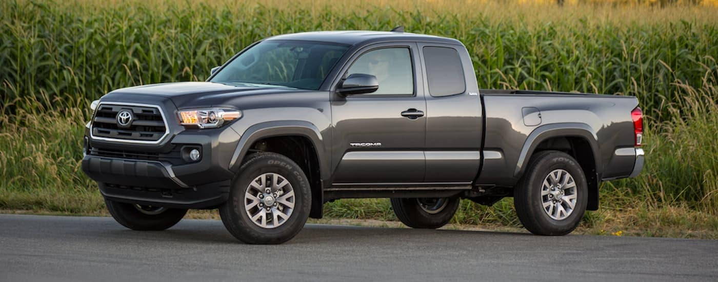 A grey 2017 Toyota Tacoma is parked in front of tall grass on a rural road.