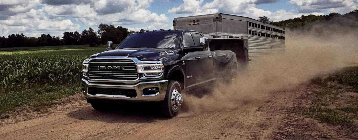 A black 2020 Ram 3500 is towing a horse trailer on a dirt road past crops.