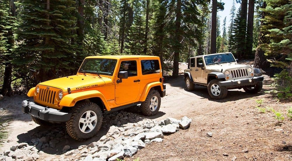 An orange and a silver 2008 used Jeep Wrangler Rubicon are parked in the woods.
