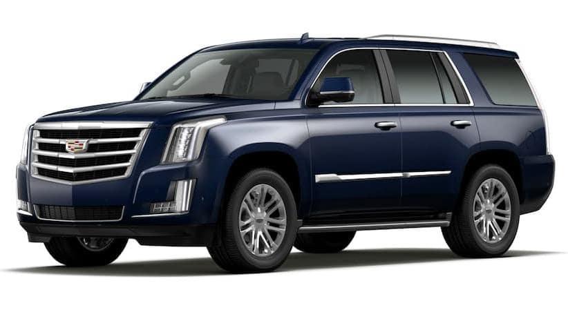A blue 2019 Cadillac Escalade facing left