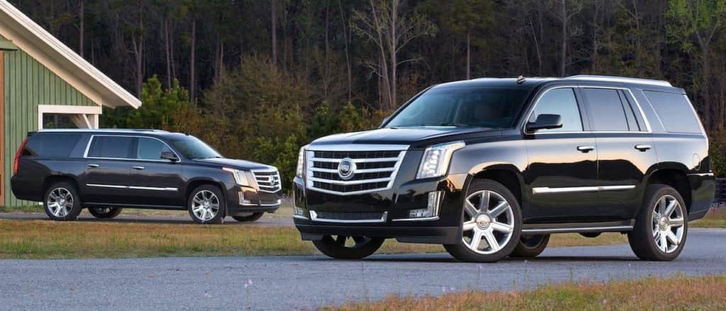 Two used black Cadillac Escalades in front of a forest