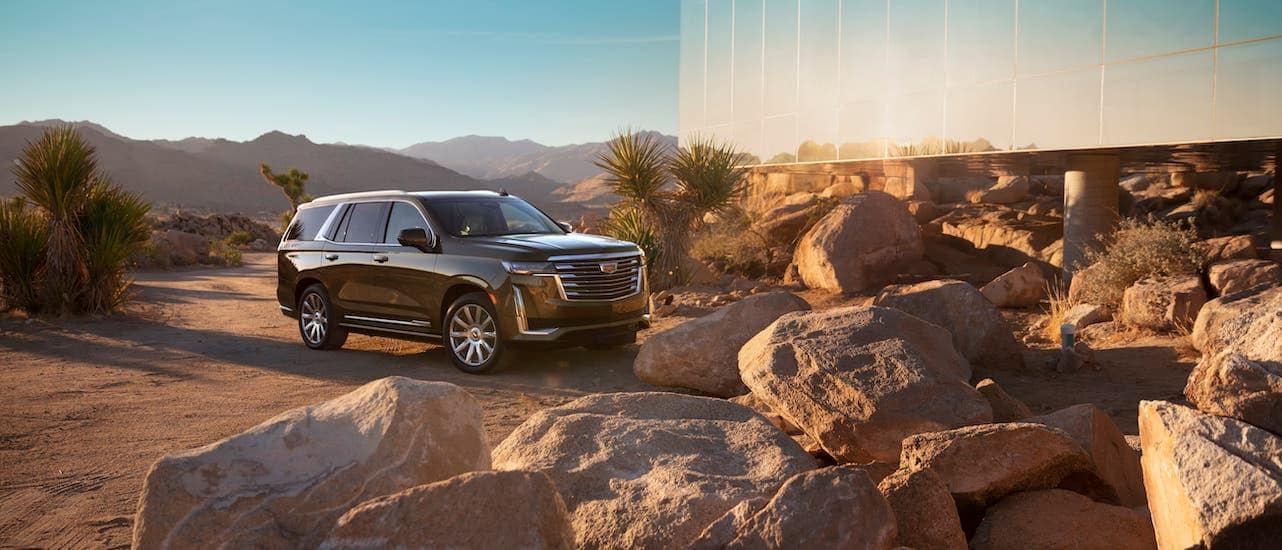 A brown 2021 Cadillac Escalade is parked victoriously in front of a glass building outside of Fort Worth, TX, after winning 2021 Cadillac Escalade vs 2020 Cadillac Escalade.