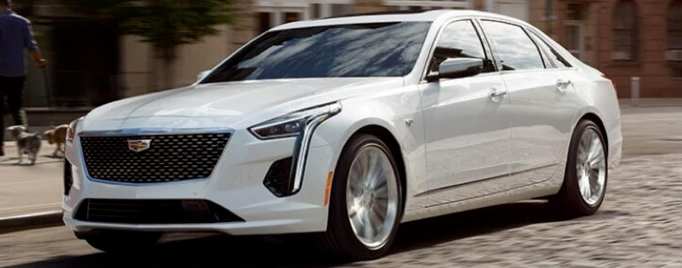 A white 2020 Cadillac CT6, which will be popular among used Cadillacs in Fort Worth, TX, is driving on a city street.