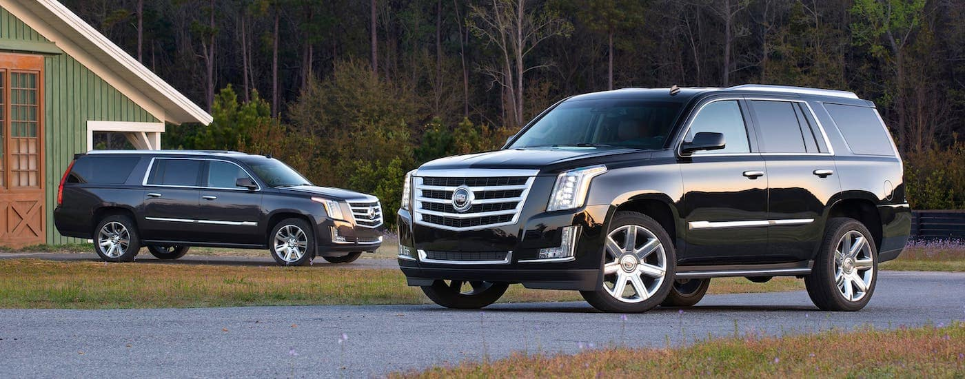 Two black 2015 used Cadillac Escalades are parked in front of a green barn.