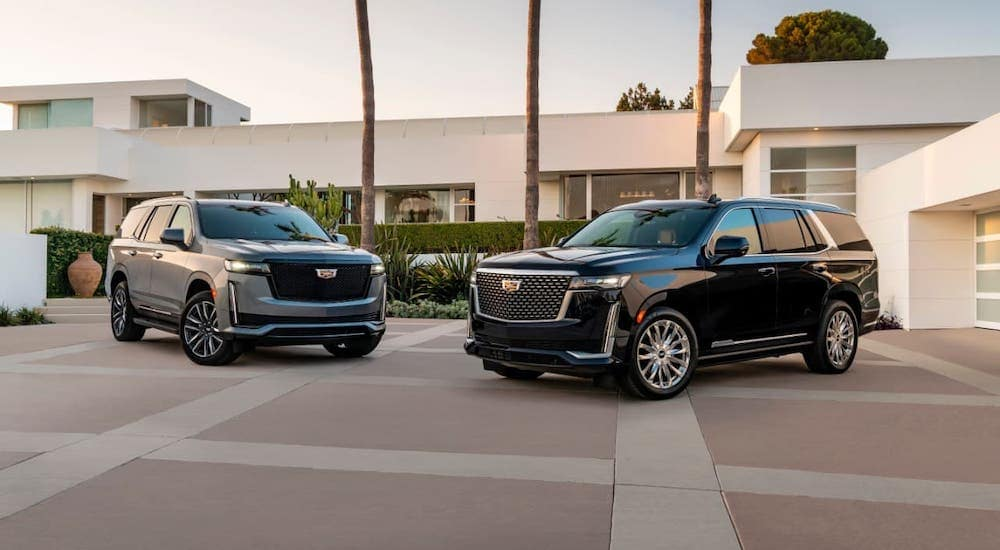A gray and a black 2021 Cadillac Escalade are parked in front of a modern home.
