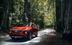 2020 Hyundai Santa Fe in Columbia