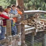 Children at zoo