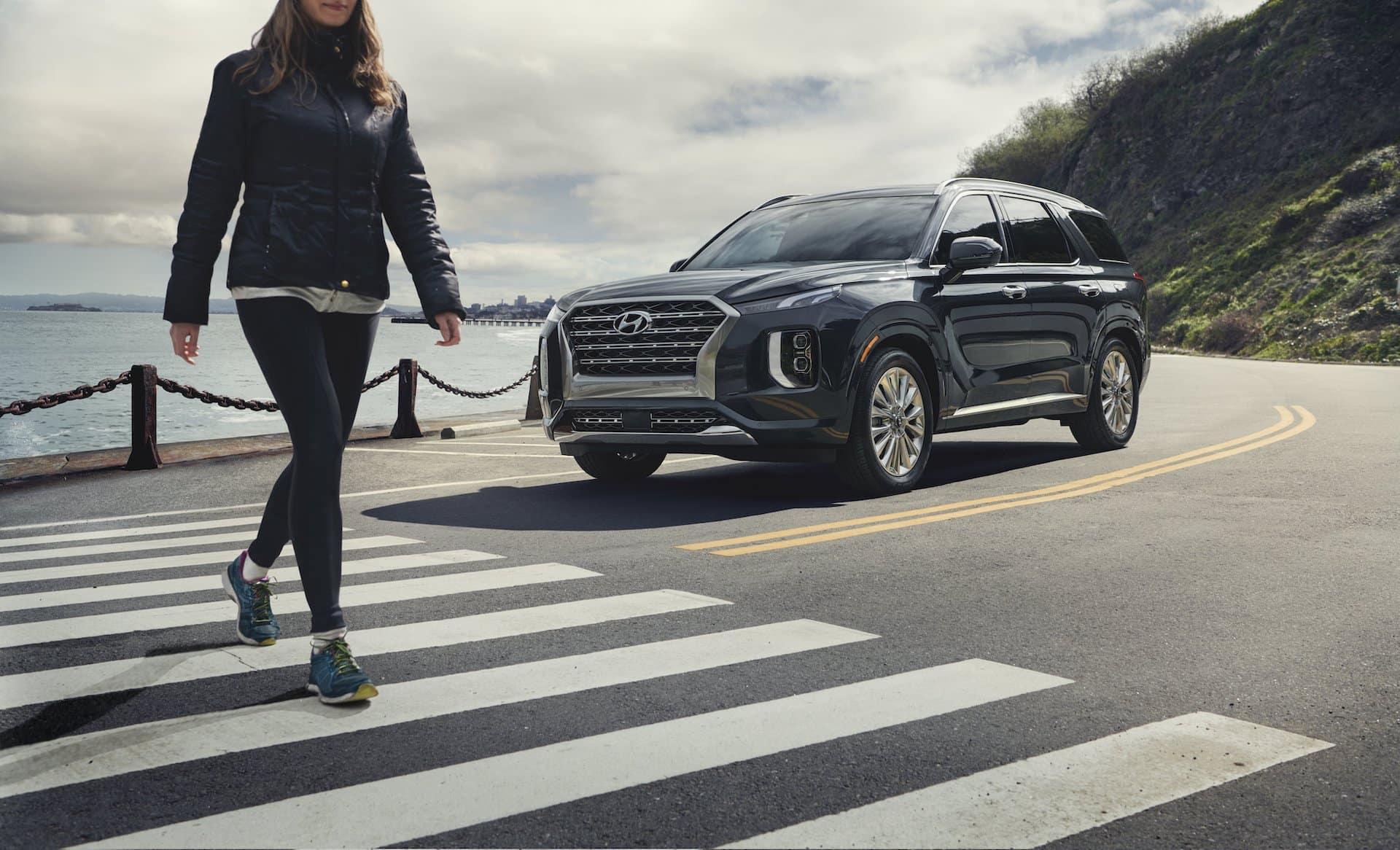 2020 Hyundai Palisade Looks