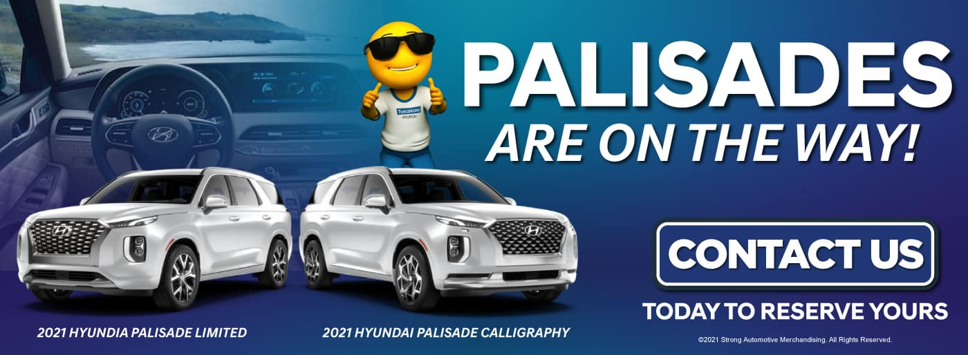 Palisades are on the way! | Contact us today to reserve yours